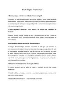 Estudo Dirigido - Fenomenologia