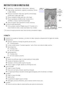 HISTOPATOLOGIA DA MUCOSA ORAL