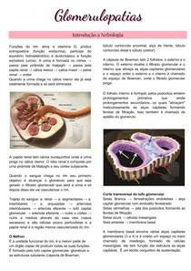 Síndrome Nefritica - Glomerulonefrite Rapidamente Progressiva - Nefrologia - Glomerulopatias