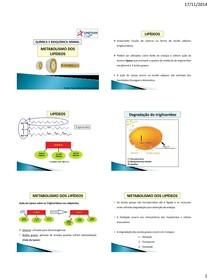 15 - Metabolismo dos lipídeos