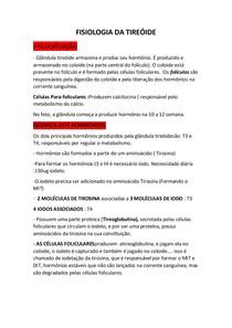 AULA 24 FISIOLOGIA DA TIREÓIDE e Pancreas