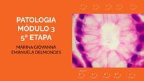 Colite, TB, amebíase, giardíase, estrongiloidíase, criptosporidiose, infarto, Chagas, varizes, hepatites, doença hepática, cirrose