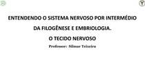 Aula 1 - ENTENDENDO O SISTEMA NERVOSO POR INTERMÉDIO DA FILOGÊNESE E EMBRIOLOGIA