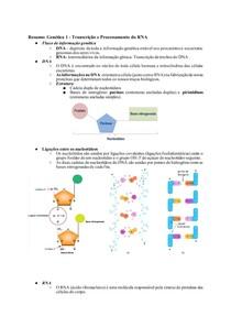 Resumo_ Genética 1 - Transcrição e Processamento do RNA