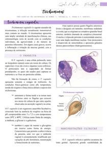 Trichomonas vaginalis (parasita, manifestações clínicas, patogênese, diagnóstico, transmissão e tratamento) - Parasitologia Humana