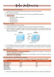 Beta-lactâmicos