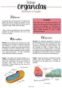 Organelas celulares - Resumos ENEM
