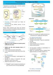 Processamento e tipos de RNA