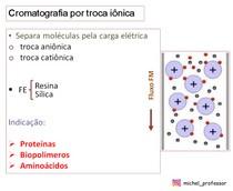 Cromatografia por troca iônica