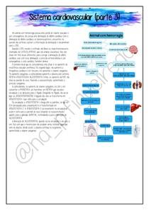 Fisiologia - Sistema cardiovascular (parte 3) (19.10.20)