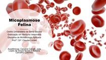 MICOPLASMOSE FELINA! Apresentação de seminário