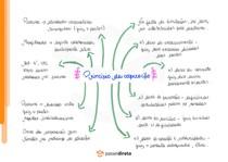 Princípio da cooperação - Mapa Mental
