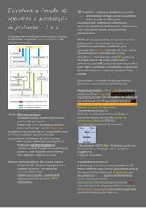 Estrutura e função de organelas e glicosilação de proteínas COMPLETO