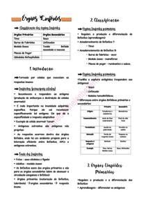 Imunologia Órgãos Linfóides - @medvethelenbezerra