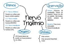 Mapa Mental Nervo Trigêmio