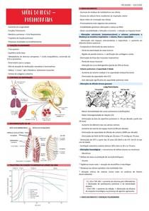 Saúde do Idoso - Pneumopatias - Resumo
