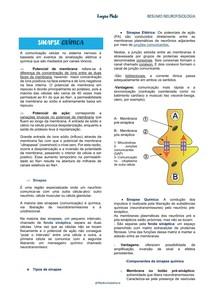 Sinapse química - Neurofisiologia - Resumo