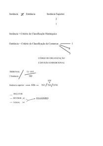 PROCESSOS NOS TRIBUNAIS PARTE III RELEMBRANDO TGP E ORGANIZAÇÃO PROCESSUAL