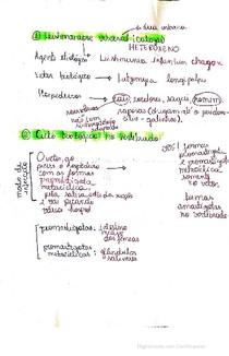 Ciclo biológico Leishmania, Eiimeria, Isospora