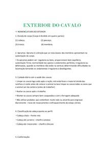 EXTERIOR DO CAVALO