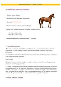 Nomenclatura zootécnica e resenha de equinos