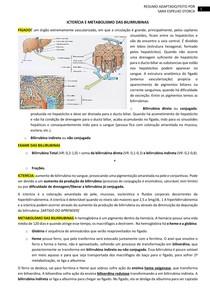 ICTERÍCIA E METABOLISMO DAS BILIRRUBINAS PRÁTICA
