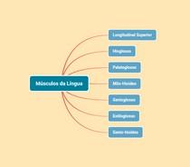 Mapa Mental Músculos da Língua