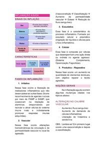 resumo inflamação - patologia geral