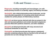 ABBAS C02 CellsTissues