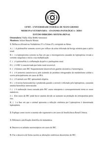 Estudo dirigido Anatomia Patologica - Sistema Renal