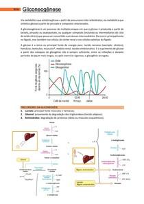 Gliconeogênese - Bases Celulares e Moleculares 2