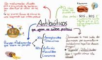 Mapa Mental - Antibióticos na síntese proteica