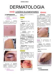 DERMATOLOGIA lesões elementares docx (1)