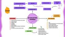 Mapa Mental Anti-inflamatórios esteroidais