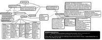 Mapa conceitual Tanatologia