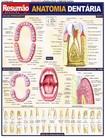 Resum+úo - Anatomia 05 -  Dentaria e da Cabe+ºa