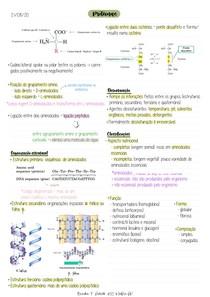 2.Proteínas