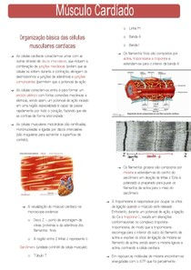 Mm cardíaco PDF