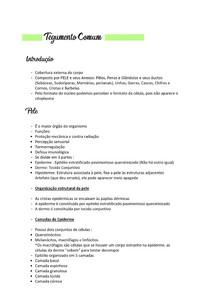 Tegumento comum - histologia