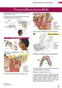 Técnicas anestésicas para a mandíbula