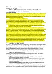 Tutorial: Biomecânica da Articulação Talocrural e do Pé