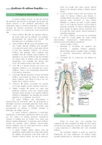 Anatomia do sistema linfático