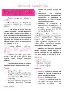 Sistema Endócrino completo