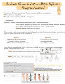 sistema motor, reflexos e percepção sensorial