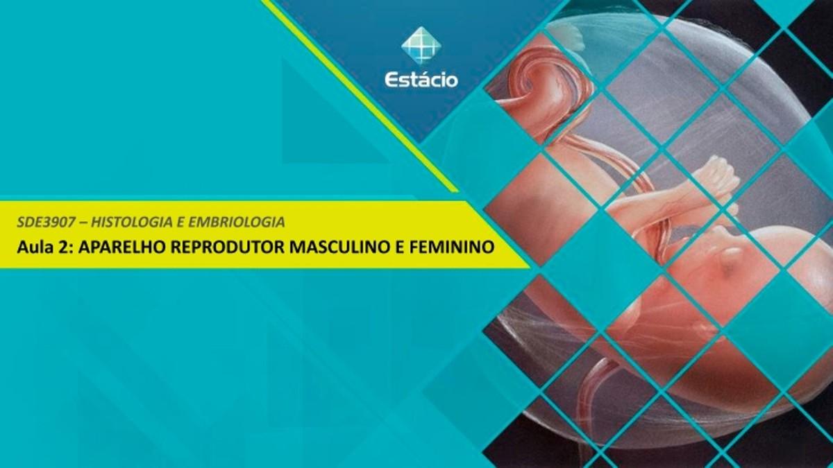 Pre-visualização do material aula 2 ciclo reprodutivo feminino e masculino - página 1