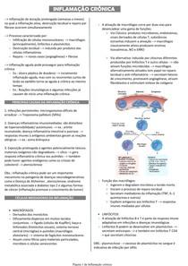 Inflamação crônica - Patologia