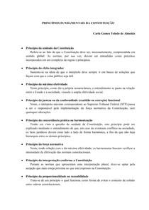 PRINCÍPIOS FUNDAMENTAIS DA CONSTITUIÇÃO
