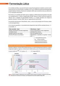 Fermentação Lática - Bases Celulares e Moleculares 2