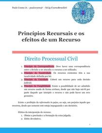Princípios Recursais e os efeitos de um Recurso