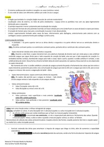 Resumo aula 1 - Coração M4